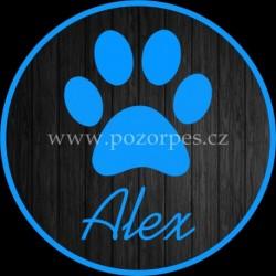 ALEX - Samolepka na auto 3ks