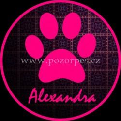 ALEXANDRA - Samolepka na auto 3ks