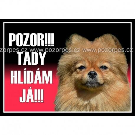 Pomeranian - Německý špic trpasličí