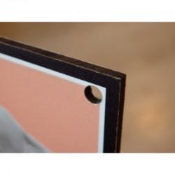 Tabulka PSÍ DŮM - hliník