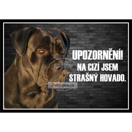 Ručník RHODÉSKÝ RIDGEBACK 50 x 100 cm