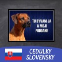 Hliníkové cedulky SLOVENSKY