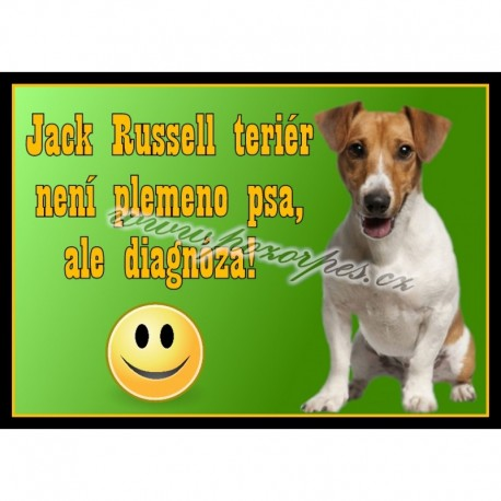 Tabulka DIAGNÓZA JACK RUSSEL