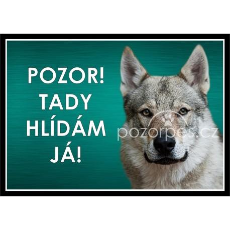 Československý vlčák