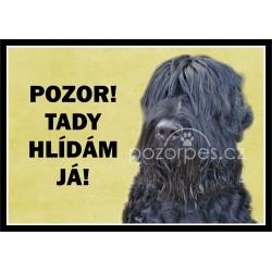 Černý ruský teriér