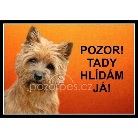 Cairn terrier/Cairn teriér