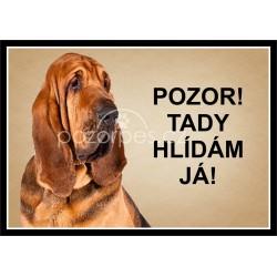 Tabulka Bloodhound - hliník