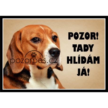 Tabulka Beagle / Bígl - hliník