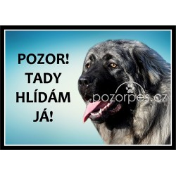 Šarplaninský pastevecký pes - šarplaninec - hliník