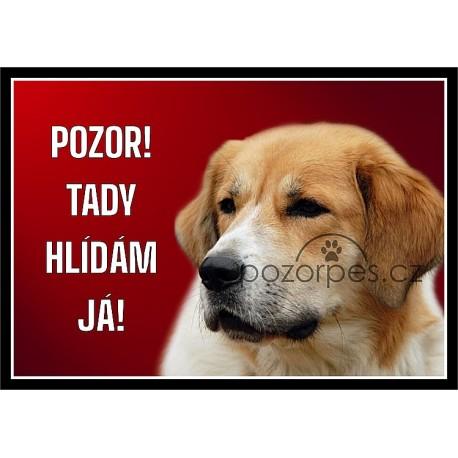 Český horský pes - hliník