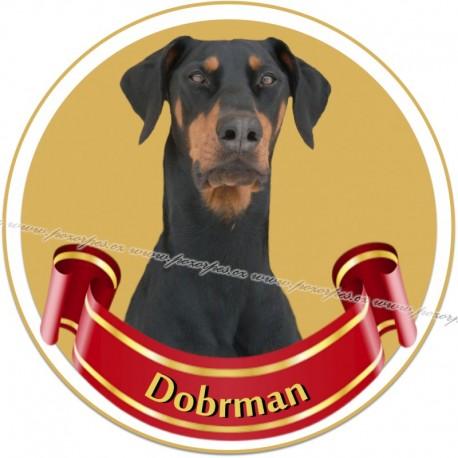 DOBRMAN - samolepa na auto19cm/3ks