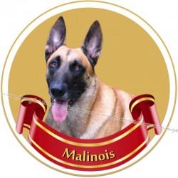 MALINOIS - samolepa na auto19cm/3ks