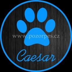 CAESAR - Samolepka na auto 3ks